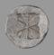 P17:T18 Selinus