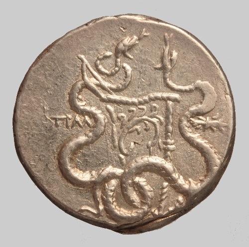 silver Cistophoric tetradrachm rev.