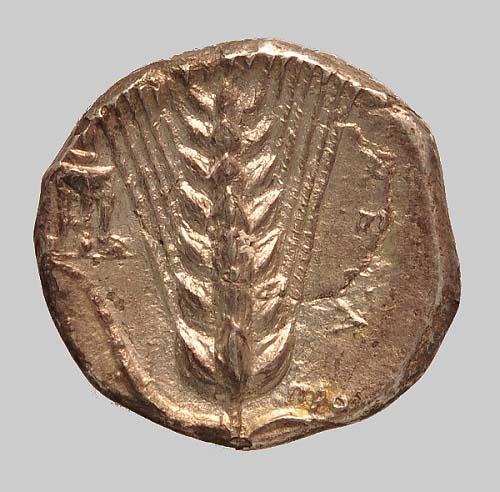 T15 Metapontum stater 330BC kz