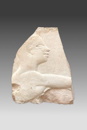 T19 Egypt. kalksteen fragm